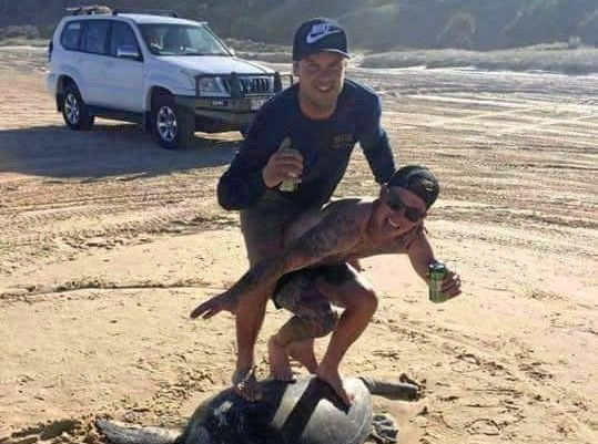 The image posted to Facebook, showing the men 'surfing' on the back of the beached turtle.