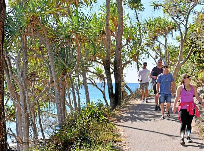 Noosa National Park's coastal walking track was for walkers enjoying nature, nor fitness addicts about for a run. Photo: John McCutcheon / Sunshine Coast Daily