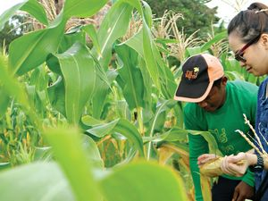 Thai farm visit teaches traditional agriculture