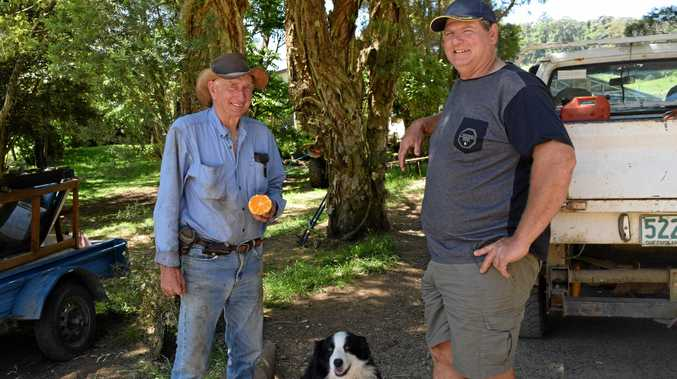 Neil Cunningham and Dale Fortescue hope the Eungella cemetery could draw interest from visitors one day.
