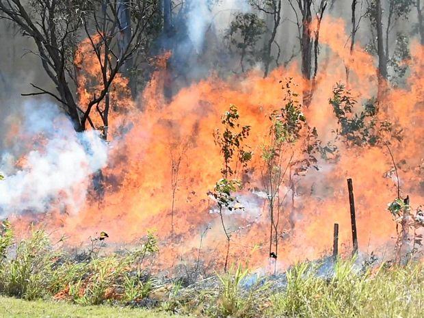 BUSH BLAZE: A fire has broken out in Yandina.