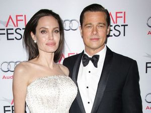Jolie set to fights Pitt's bid for joint custody