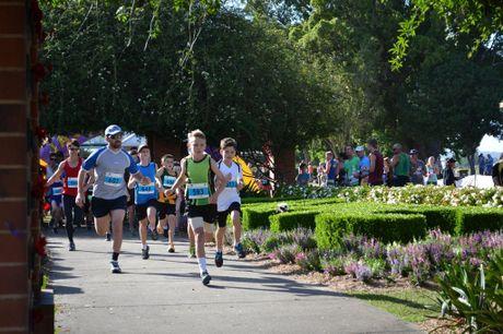 The start of the 5km in the 2016 Jacaranda Fun Run held at Memorial Park, Grafton on Sunday 6th, November, 2016.
