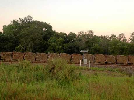 Anthony Thompson snapped these photos of the cane train derailment Sunday evening.