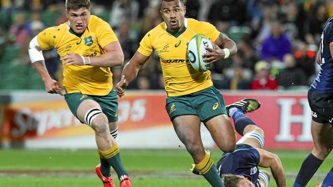 Will Genia of the Wallabies makes a run during the Rugby Championship match against Argentina.