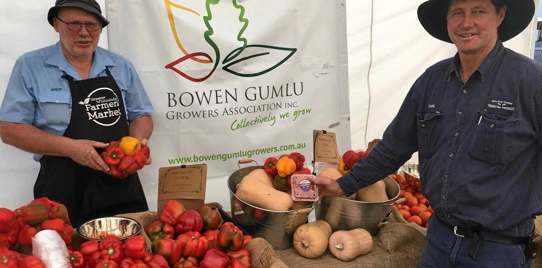 STAYING FRESH: Steve Schmidt from Vegie Unlimited handled the logistics for the Bowen Gumlu Growers Association members, like Carl Walker, to provide the Greater Whitsunday Farmers Market with produce.