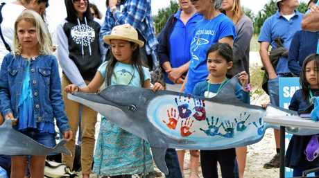 Children from Northern NSW show their support for marine wildlife at a rally against shark nets at Lighthouse Beach last month.