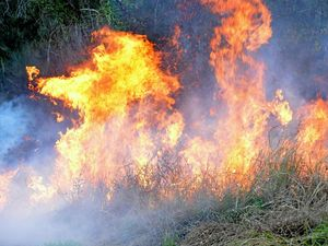 Out of control fire burns in Bellingen national park