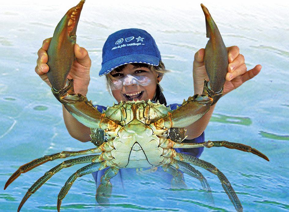 GOOD EATING TOO: Catching crustaceans is great fun if it's done properly.