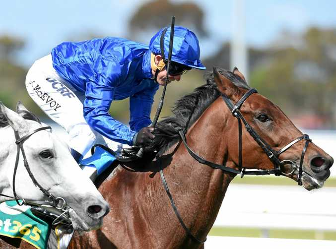 Qewy, ridden by Kerrin McEvoy, wins the Geelong Cup in October.