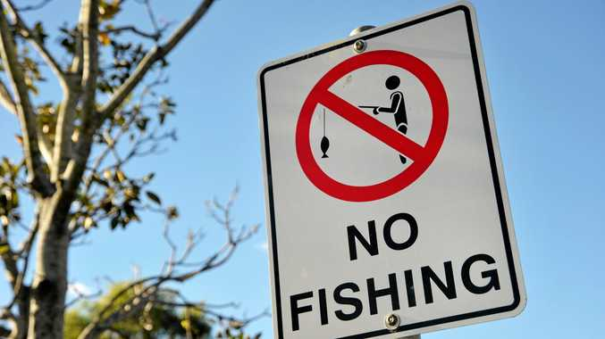 A total of 203 illegal recreational fishing offences were recorded in the Mackay Whitsunday region.