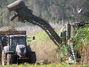 Mackay Sugar mills to keep crushing into new year