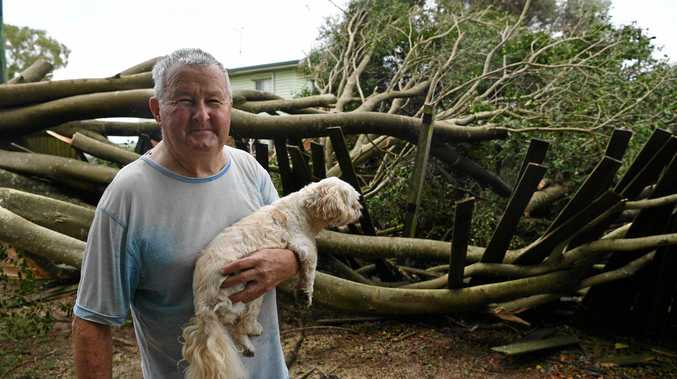 STORM DAMAGE: Barry Downing lost power when his tree was taken down by gusty winds along Moore Park road.