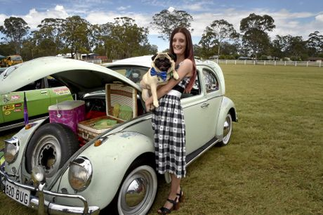 SHOW AND SHINE: Samantha Mears loves to travel to car shows with her 1962 VW Bug.