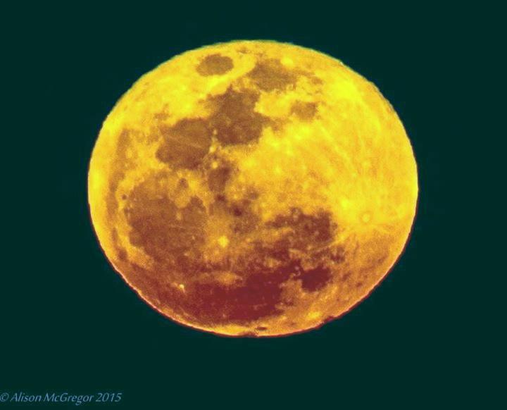 Super full moon rising at Town Beach Mackay. Photo Alison McGregor