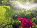 EVERY gardener knows that one of the most precious resources for a healthy vegetable or flower patch is water.