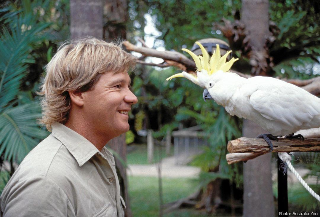 Steve Irwin's legacy is celebrated every year on November 15.