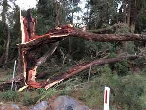 Storms smash Gympie region