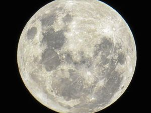Your Mackay supermoon pictures, close up