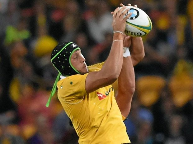 Wallabies player Adam Coleman will miss the rest of the Spring Tour through injury.