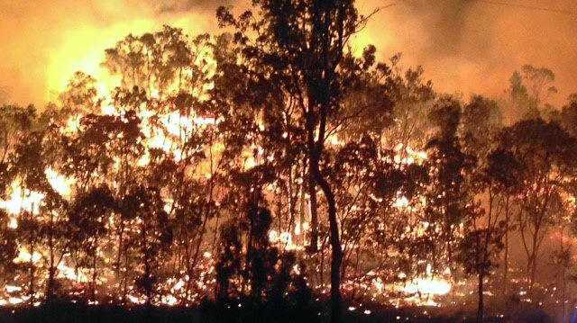 The bushfire at Mount Chalmers roared up again about 1am, Tuesday, November 15.Photo Contributed