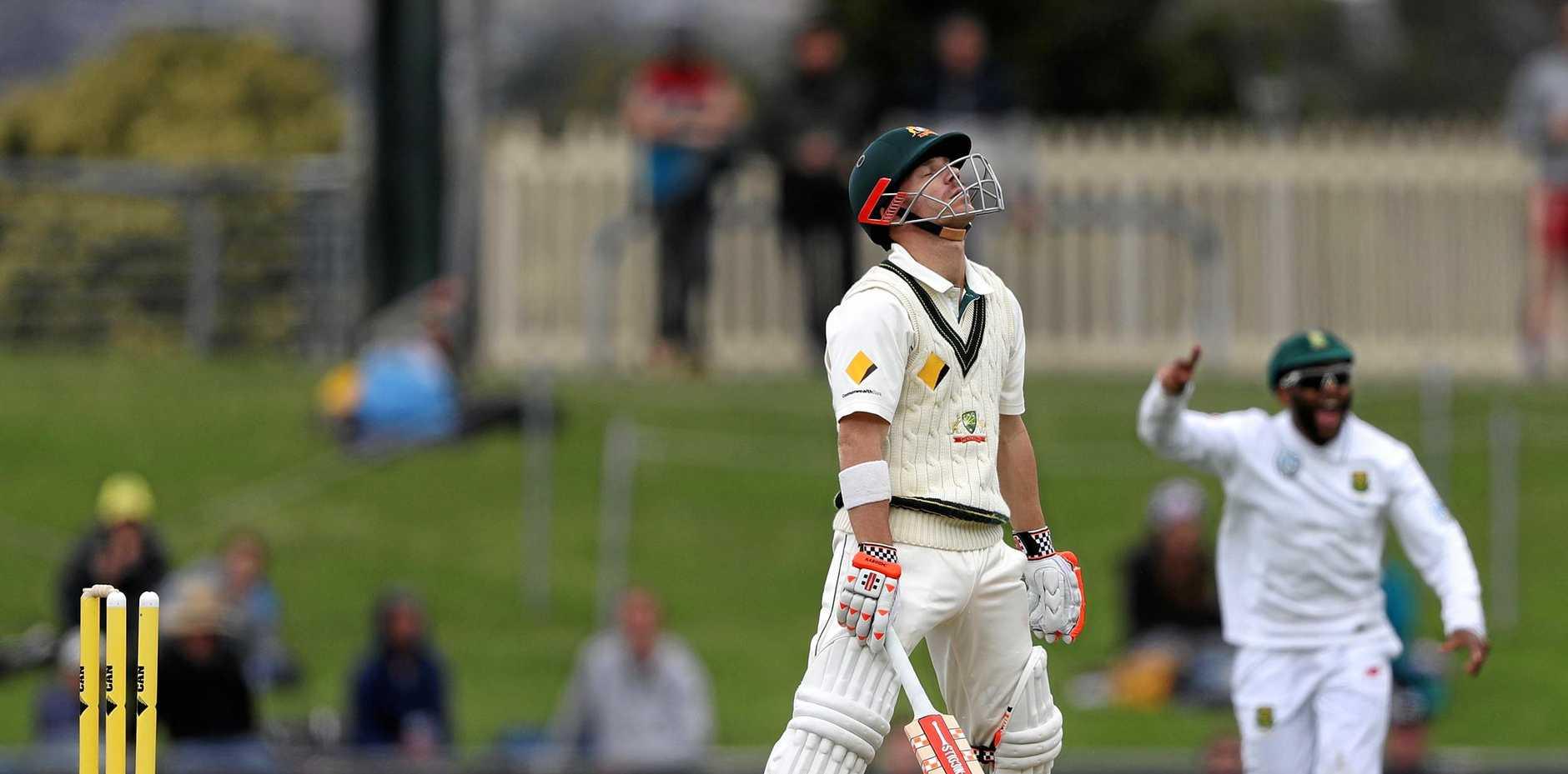 David Warner knows he's gone in Australia's second innings.