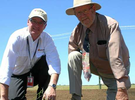 Wellcamp Airport general manager Phil Gregory (left) and QMDC Chair Noel Strohfeld OAM plant a tree on Friday.