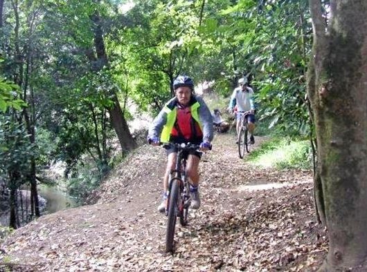 BIKE TRAIL: Could Kyogle and it's surrounding villages become a mecca for bike lovers?