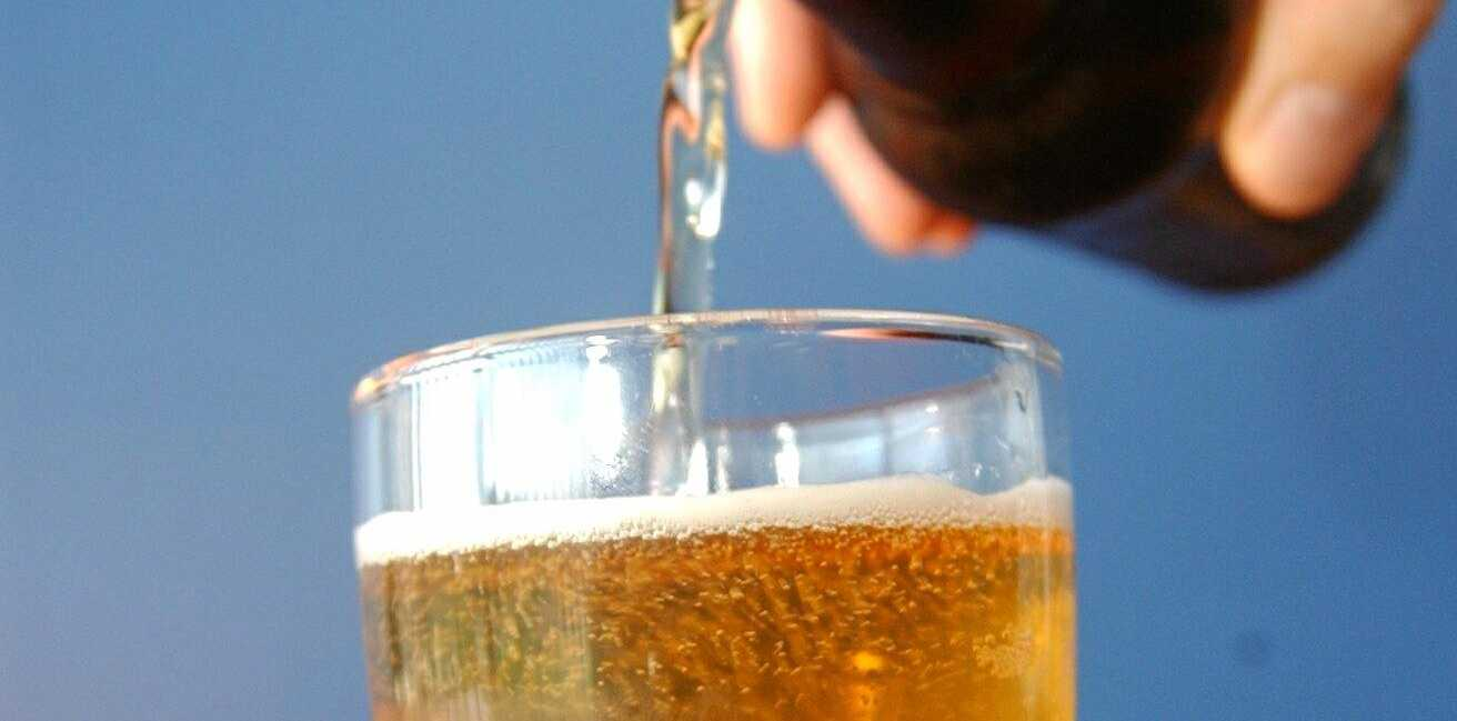 Enjoying a pint of beer a day could help reduce your risk of suffering a stroke or developing cardiovascular disease.
