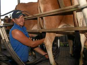 Dairy farmer takes on new board role