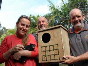 Pottsville Men's Shed provides new possum home