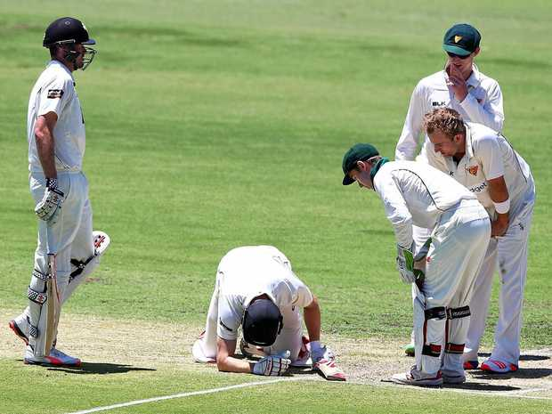 WORRYING SCENES: Adam Voges of the Warriors sinks to his knees after being struck in the head by a bouncer from Tigers quick Cameron Stevenson at the WACA.