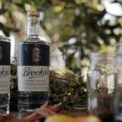 Crowdfunding starts 25 November for Brookie's Byron Dry Gin.