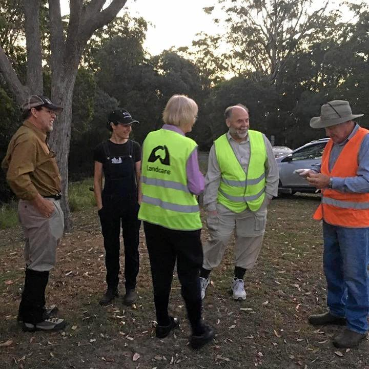 Local Maclean residents discuss toading tactics at Maclean lookout ahead of last Fridays toad bust (Photo: Eshana Bragg)