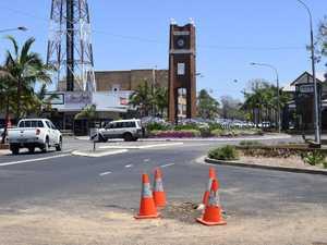 UPDATE: Jacaranda tree removed from festival precinct