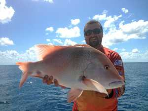 Red emperor Mackay anglers' prized trophy