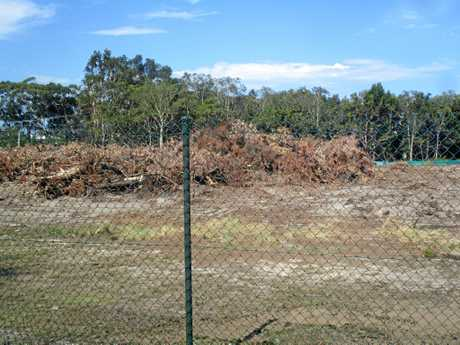 BEFORE: The site of a fire at a Mt Coolum development site that started overnight, before the burn.