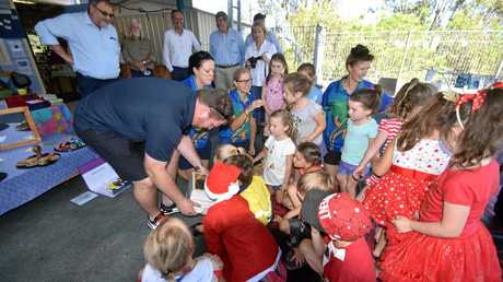 Woodburn pre-schoolers get to see their own Australian native stingless bees.