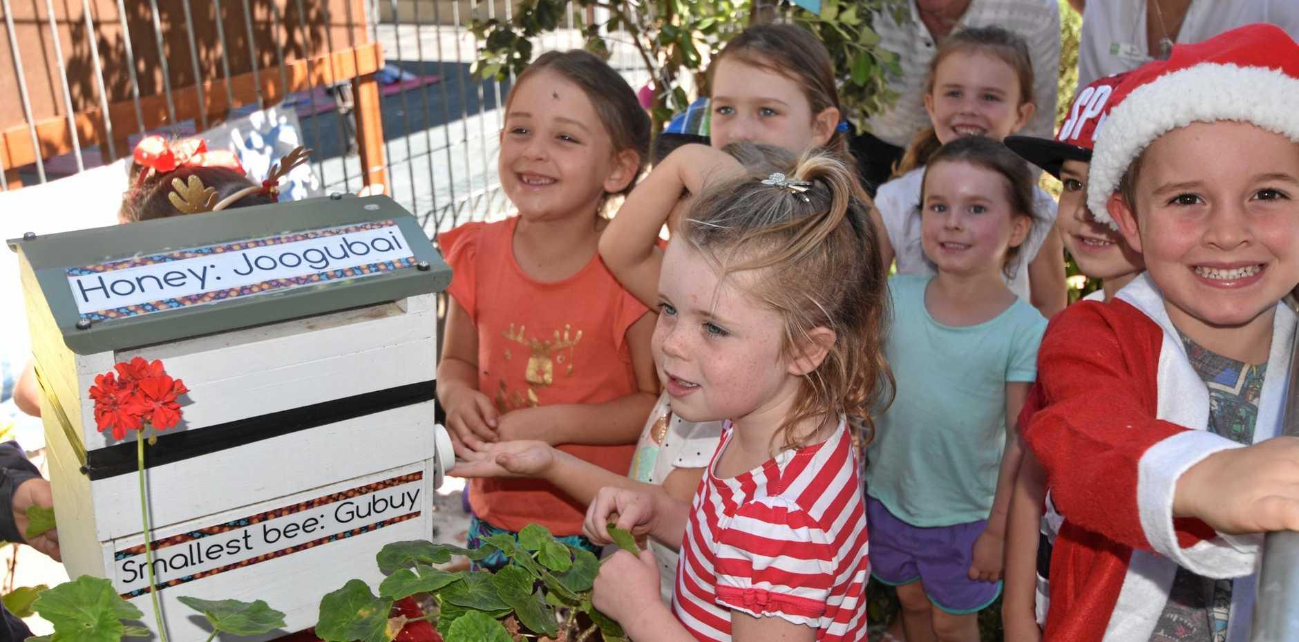 A new beehive for Woodburn Preschool