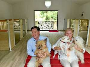 Dogs lap up luxury at five-star pet resort