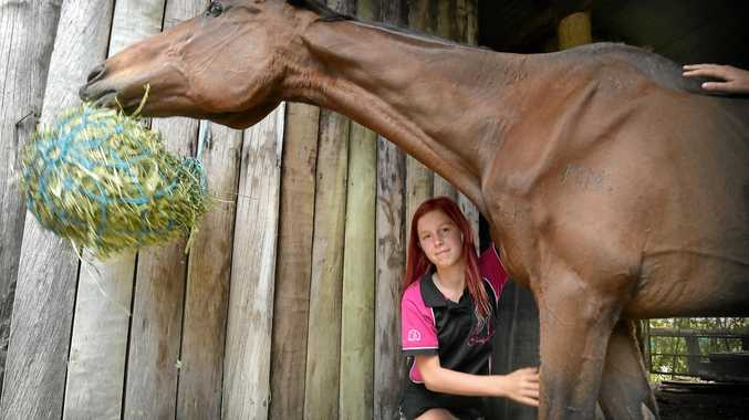 Animal rescue ranch at Yandina, Soquilchi. Organisers are have funding problems to keep operating. Aaliyah Wells with rescue horse M&M.