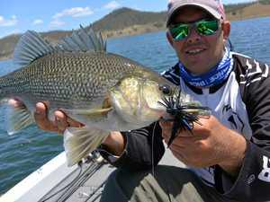 Kingaroy angler reels in 'silver' at Cania Dam
