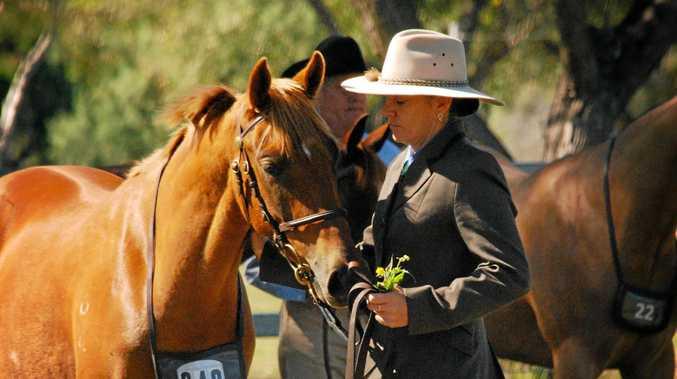 NEW VENTURE: Oakey horsewoman Sam Vuksanovic