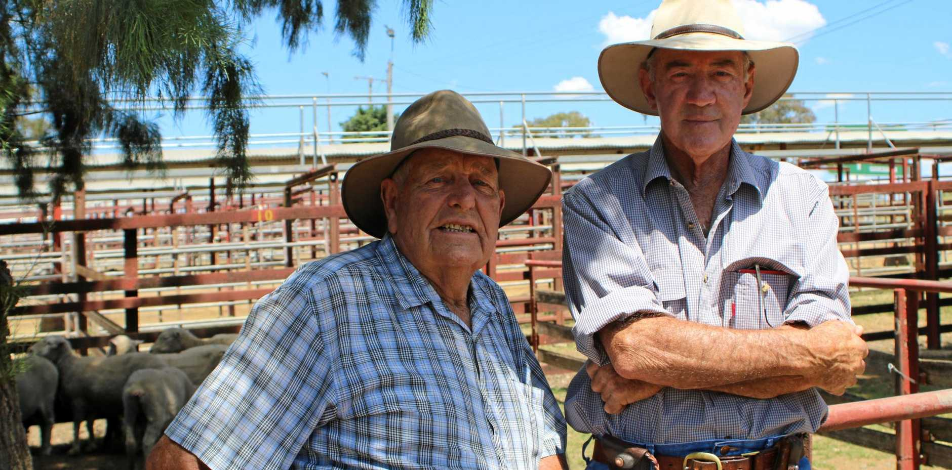 CATCH UP: Ray Hull and Gary Milgate chatting away at the sheep sale.
