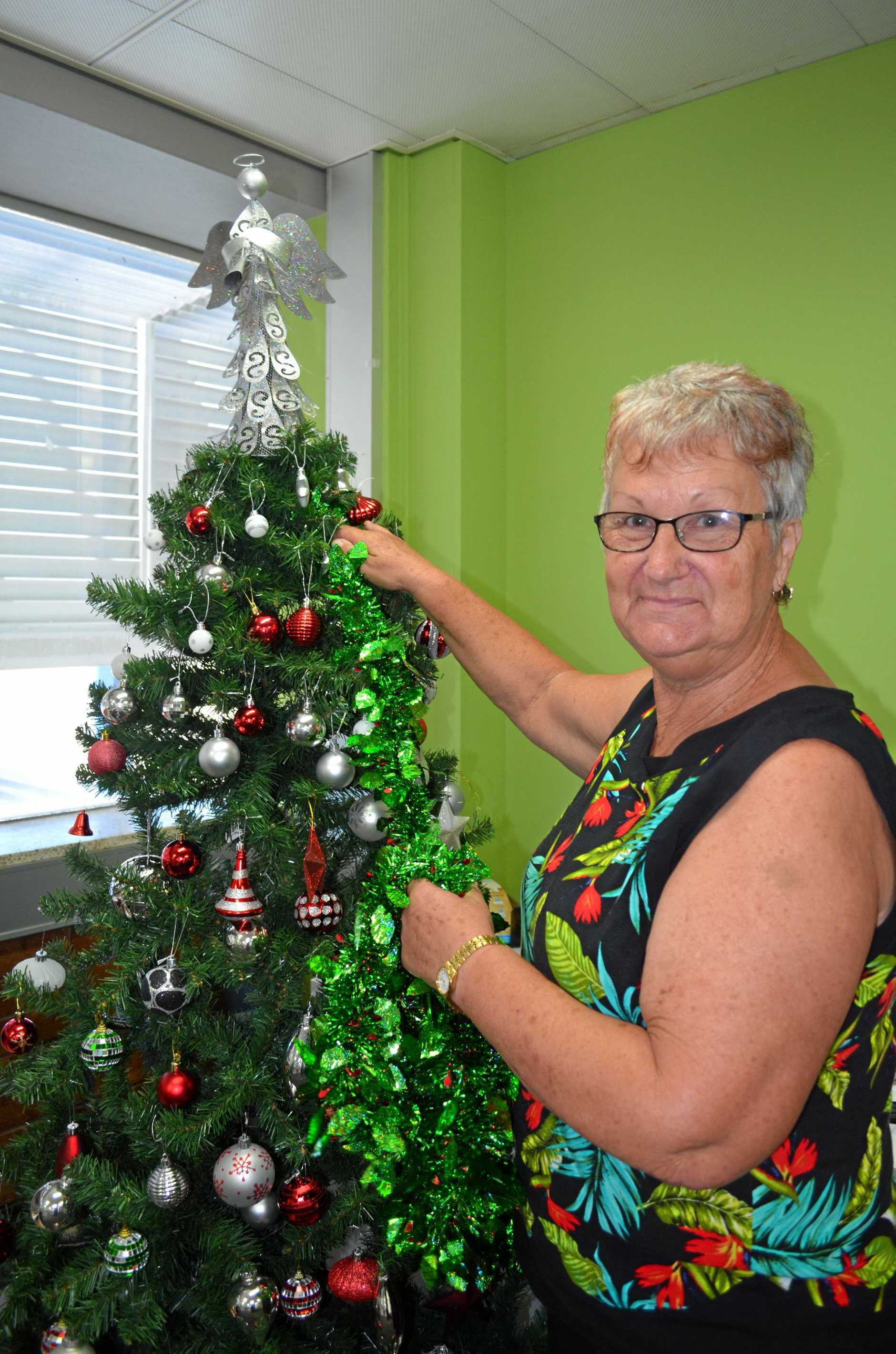 Sarina resident Lyn Birch enjoys decorating her house each year and won the Christmas Lights competition in 2015 at a value of $3000.