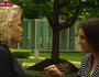 Lambie in finger pointing backpacker tax rant