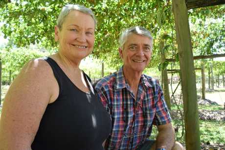 Beerwah passionfruit farmers Anton and Marcia Stretch are looking forward to a good harvest at their Passiondale Queensland farm.