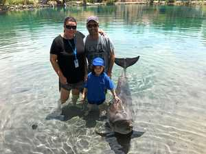 Mackay girl with rare childhood cancer swims with dolphins