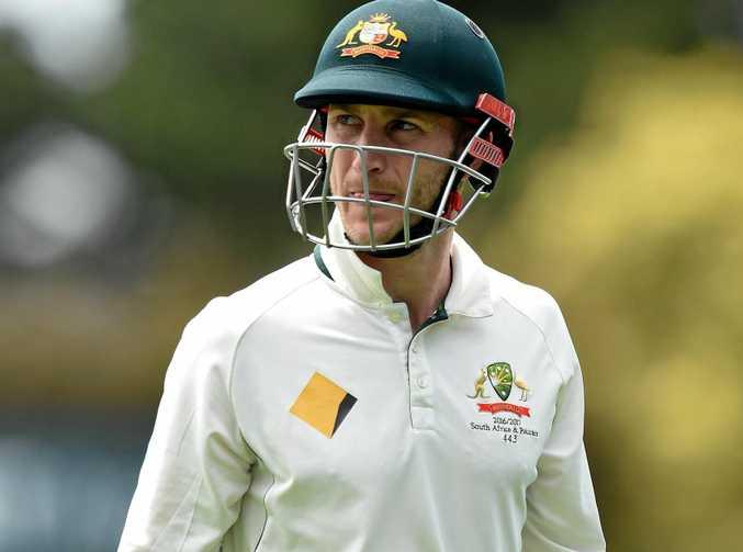 NSW and former Australian batsman Peter Nevill.