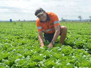 Backpacker tax: What our farmers think